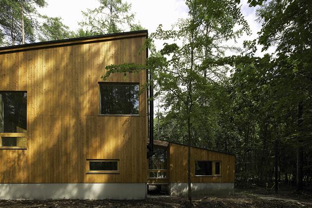 森の家-2