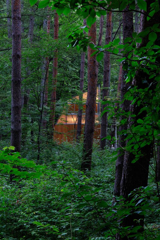 森のゲストハウス-13